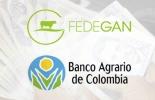 Convenio de cooperación, financiación de recursos, irrigación de crédito, Fedegán-Banco Agrario, facilitación de crédito, proyectos productivos, retos de la ganadería, reducción de costos, brigadas de crédito, CONtexto ganadero, noticias de ganadería colombiana.