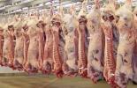 Exportaciones carne noviembre 2018, exportaciones carne FEP 2018, Fondo de Estabilización de Precios, Exportaciones de ganado en pie Colombia 2018, Exportaciones de carne bovina de Colombia en 2018, precio dólar Colombia, exportaciones de carne bovina, exportaciones de carne bovina en 2018, exportaciones de carne bovina en noviembre 2018, exportaciones ganado Colombia, CONtexto ganadero, ganadería colombia, noticias ganaderas colombia