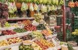 Precios, alzas, frutas, hortalizas, verduras, oferta, demanda, invierno, bajas, recrudecimiento, invierno, niveles, mejores, tendencia, tendencia, capital, país, bulto, abastos, corabastos, evento, estabilidad, heladas, productores, productor, CONtexto ganadero, ganaderos Colombia, noticias ganaderas Colombia
