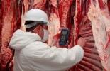 Colombia, carne, exportaciones de carne en el primer trimestre de 2019, CONtexto ganadero, noticias ganaderas, economía carne