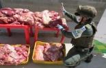Colombia, contrabando de productos agropecuarios, zonas de frontera, ICA, CIIIP, nuevo golpe al contrabando agropecuario en zonas de frontera, carne bovina, frutas, productos perecederos, estructuras delincuenciales, captura de personas por contrabando, Centro Integrado ICA, INVIMA, POLFA/DIAN (CIIIP), Cúcuta, Ipiales, Nariño, Arauca, La Guajira, zapote, níspero, Deyanira Barrero León, CONtexto ganadero.