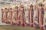 Cifras sacrificio ganado bovino julio 2020, Sacrificio de ganado 2020, sacrificio bovino 2020, sacrificio julio 2020, cifras sacrificio, sacrificio legal de bovinos, sacrificio formal, sacrificio colombia, sacrificio bovino Colombia, encuesta sacrificio ganado 2020, Cifras sacrificio bovino Colombia 2020, sacrificio bovino Colombia 2020, coronavirus, coronavirus Colombia, COVID-19, cuarentena, Ganadería, ganadería colombia, noticias ganaderas, noticias ganaderas colombia, CONtexto ganadero