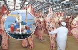 exportaciones de carne 2021, exportaciones carne mayo 2021, exportaciones carne, exportaciones carne Colombia 2021, Exportación carne 2021, exportaciones carne 2021, exportación de bovinos Colombia, exportación carne bovina, carne vacuna,  total exportaciones carne Colombia, ganado bovino, ganadería bovina, ganaderos, ganaderos colombia, ganado, vacas, vacas Colombia, bovinos, Ganadería, ganadería colombia, noticias ganaderas, noticias ganaderas colombia, CONtexto ganadero, contextoganadero