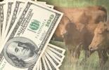Ganadería, ganadería colombia, noticias ganaderas, noticias ganaderas colombia, CONtexto ganadero, tasa de cambio, dólar en colombia, dólar hoy en colombia, precio del dólar en colombia, impacto del precio del dólar en la economía de colombia, aumento del precio del dólar, exportaciones de carne, exportaciones de ganado en pie,
