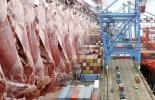 exportaciones de carne 2021, exportaciones carne primer trimestre 2021, exportaciones carne, exportaciones carne Colombia 2021, Exportación carne 2021, exportaciones carne marzo 2021, exportación de bovinos Colombia, exportación carne bovina, carne vacuna, economía internacional, comercio internacional, total exportaciones carne Colombia, ganaderos, ganaderos colombia, ganado, vacas, vacas Colombia, bovinos, Ganadería, ganadería colombia, noticias ganaderas, noticias ganaderas colombia, CONtexto ganadero