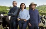 Ganadería, ganadería colombia, noticias ganaderas, noticias ganaderas colombia, CONtexto ganadero