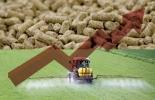 Aumento precio de insumos en 2021, precio de los insumos, precio de los insumos en colombia, control a los precios de los insumos, proyecto de ley control de precios a los insumos, alimentos balanceados, concentrados, fertilizantes, precios 2021, ganado bovino, ganadería bovina, carne, leche, ganaderos, ganaderos colombia, ganado, vacas, vacas Colombia, bovinos, Ganadería, ganadería colombia, noticias ganaderas, noticias ganaderas colombia, CONtexto ganadero, contextoganadero