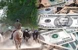 dólar agropecuario