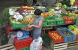 Productores agrícolas.