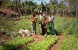 inversión campo colombiano