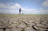Sequía Colombia, seguros agropecuarios