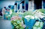 Transporte de alimentos Colombia