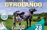 La tarde del Gyrolando, Gyrolando 2017 Evagro Taurus Genetics, Evagro Agropecuaria, Taurus Genetics, día de campo Gyrolando noviembre 2017, día de campo Evagro, Gyrolando Colombia, hacienda El Empedrado, CONtexto ganadero, ganaderos Colombia, noticias ganaderas Colombia