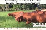 Gira rentable y regenerativa en Córdoba, ganadería rentable, Ganadería regenerativa, ganadería regenerativa en Córdoba, evento ganadero en Córdoba, Acoganar