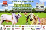 Feria ganadera de Yopal, comité regional de ganaderos de Yopal, ganaderos de Yo