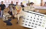 Eventos ganaderos, ferias ganaderas, ferias ganaderas Colombia, Eventos ganaderos enero 2020, subastas, inicio 2020, enero 2020, Venta de ganado, subastas ganaderas, CONtexto ganadero, ganaderos Colombia, noticias ganaderas Colombia