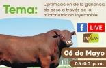 Micronutrición inyectable, micronutrición inyectable en ganado bovino, nutrición de ganado, Optimización de la ganancia de peso a través de la micronutrición inyectable, facebook live, capacitación, capacitación en línea, capacitación online, fedegan, Colombia, Fedegán capacitación, capacitación Facebook Live, formación ganaderos, capacitación ganaderos, capacitación ganadería, coronavirus, COVID-19, cuarentena, Ganadería, ganadería colombia, noticias ganaderas, noticias ganaderas colombia, CONtexto ganader