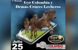 1er remate virtual de Gyr Colombia y demás cruces lecheros, gyr Colombia, remate virtual, remate virtual de Gyr, venta virtual de ganado, Venta de ganado, producción de leche en el trópico, Gyr, raza, leche, carne, doble propósito, trópico bajo, principal productor de leche, rentabilidad, criadores colombianos, coronavirus, coronavirus Colombia, COVID-19, cuarentena, Ganadería, ganadería colombia, noticias ganaderas, noticias ganaderas colombia, CONtexto ganadero