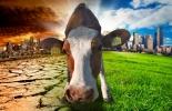 Ganadería y cambio climático, ganadería afectada por el cambio climático, charlas ganaderas julio 2021, eventos ganaderos, Escuela del Agro, seminario Escuela del Agro, cambio climático, producción ganadera, ganadería clima, clima, ganado bovino, ganadería bovina, ganaderos, ganaderos colombia, ganado, vacas, vacas Colombia, bovinos, Ganadería, ganadería colombia, noticias ganaderas, noticias ganaderas colombia, CONtexto ganadero, contextoganadero