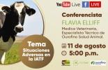 Ganadería, ganadería colombia, noticias ganaderas, noticias ganaderas colombia, CONtexto ganadero, iatf, importancia de iatf, iatf colombia, ourofino, flavia elliff,
