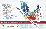Afiche 'Yopal Cultural' 2012