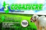 Cogasucre