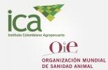 El Fondo Mundial de la OIE para la salud y el bienestar de los animales, OIE, Organización Mundial de Sanidad Animal, Instituto Colombiano Agropecuario, bienestar animal, cooperación internacional, manejo animal, gobernanza sanidad animal, ayuda internacional, ICA, Ministerio Agricultura Colombia, CONtexto ganadero, ganaderos colombia, noticias ganaderas colombia