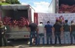 Contrabando, carne, queso, contrabando en zona de frontera, banda delicuencial, ICA, POLFA, CIIP, CONtexto ganadero, noticias ganaderas colombianas, bovinos, carne