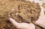 abonos orgánicos,  abonos orgánicos en ganadería, ventajas de los  abonos orgánicos, clasificación de los abonos orgánicos, proyecto Ganadería Colombiana Sostenible