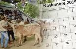 eventos ganaderos de noviembre, ferias ganaderas en noviembre, taller ganadero en noviembre, congreso Fedegán, Feria Nacional Cebú, congresos ganaderos en noviembre