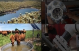 ganaderia, ganaderia colombia, ganaderia colombiana, contexto ganadero, noticias ganaderas, noticias ganaderas colombia, Ganadería, agua, agua estructurada, consumo de agua en la ganadería, beneficios del consumo de agua estructurada,  calidad del agua, olor y sabor del agua, la calidad del agua es detectada por los animales por su olor y sabor, aguas duras, Agua estructurada hexagonal, Tecnología para obtener agua estructurada hexagonal, Estructuradores de agua, Daniel Ruiz Castilla, CONtexto ganadero