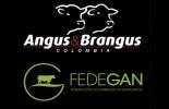 alianza Fedegán y Asoangusbrangus, reuniones gremiales, fomento al consumo de carne