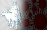 Ganadería, ganadería colombia, noticias ganaderas, noticias ganaderas colombia, CONtexto ganadero, Ciclo de Vacunación, vacunación contra aftosa, aftosa 2020, ciclo de vacunación 2020, fedegan, fedegán vaunación, fechas ciclo de vacunación, fechas ciclo de vacunación 2020, ICA, ica vacunación, protocolo ciclo de vacunación, estatus sanitario, estatus sanitario Colombia