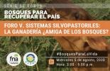 Ganadería, ganadería colombia, noticias ganaderas, noticias ganaderas colombia, CONtexto ganadero, Fondo Nacional de Ambiente, Cipav, WWF, 'Sistemas silvopastoriles: la ganadería ¿amiga de los bosques?, Proyecto Ganadería Colombiana Sostenible, Sistemas silvopastoriles