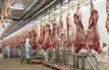 ganadería, ganadería colombia, noticias ganaderas, noticias ganaderas colombia, contexto ganadero,  carne, consumidores de carne, qué quieren los consumidores de carne, bienestar animal, sostenibilidad ambiental, alimentación con carne, carne buena para la salud, exportar carne, tratados de libre comercio, aranceles, acceso a mercados de carne
