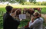 Ganadería, ganadería colombia, noticias ganaderas, noticias ganaderas colombia, CONtexto ganadero, estrés, estrés en bovinos, calidad de leche, leche sin estrés, producción leche sin estrés, estrés ganadería, one health, una sola salud oie