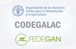 Ganadería, ganadería colombia, noticias ganaderas, noticias ganaderas colombia, CONtexto ganadero, ganadería colombiana sostenible, sostenibilidad, sanidad, charla uruguay, Codegalac, FAO, charla de fedegán para productores uruguayos, Proyecto Ganadería Colombiana Sostenible