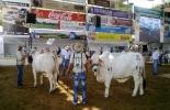 Feria Nacional Cebú
