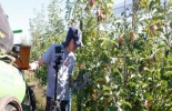 Brazo robótico para la agricultura