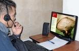 curso virtual sobre mastitis fepale