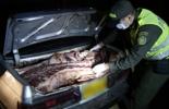 Carne de contrabando