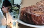 Eliminar en laboratorio contaminación en cárnicos