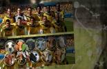 Selección colombia bovinos