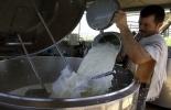 Productor de leche