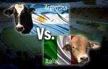 Mundial bovino CONtexto ganadero