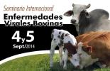 seminario internacional de enfermedades virales bovinas
