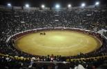 Un grupo de toreros ofrece una corrida en Quito. AFP PHOTO / Rodrigo BUENDIA