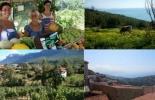 Italia, Asociación Italiana para la Agricultura Orgánica (AIAB), bio-distrito, Objetivos de los distritos biológicos, contexto ganadero, noticias ganaderas, vacas