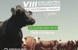 Uruguay, fororural.com,VIII Encuentro Internacional de Pastoreo Voisin, Contexto ganadero, noticias ganaderas, bovinos