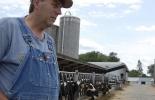 Productores lecheros de Wisconsin, ganaderos Wisconsin, lechería Wisconsin, consecuencias de las tarifas de Trump en economía de Estados Unidos, producción de leche Estados Unidos, ganadería leche Estados Unidos, cifras de la producción láctea en Estados Unidos, USA, eeuu, Cifras de la ganadería bovina de Estados Unidos, CONtexto ganadero, ganadería colombia, noticias ganaderas colombia